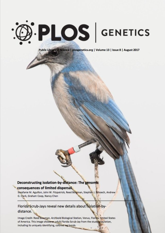 PLOS_cover_image.jpg